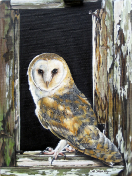 Barn Owl oil painting for sale UK direct from Oxfordshire ...